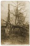 Soldat allemand sur un arbre brisé par un obus
