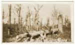 Le terrain de l'offensive américaine du 26 septembre 1918