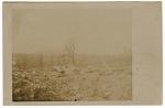 Vue de la tranchée sur l'une des croupes de la forêt d'Argonne