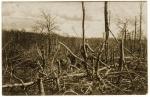 Après l'attaque du 29 janvier 1915