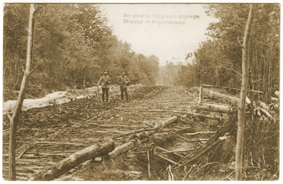 Route construite par les allemands en Argonne